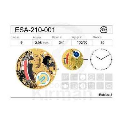 MOVIMIENTO ESA 210-001