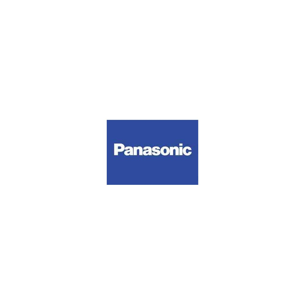 PILA PANASONIC 2012